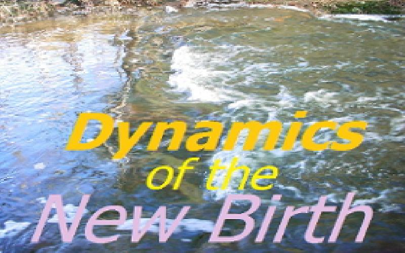 Dynamics Of The New Birth