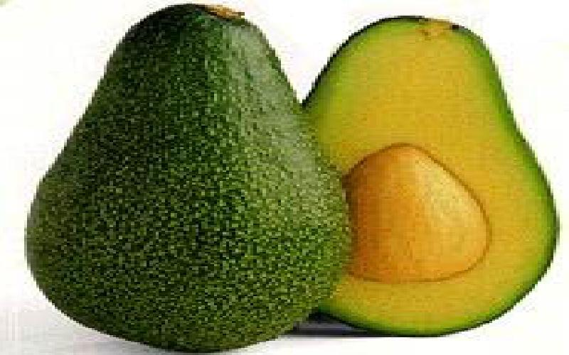 5 Best Avocado Hair Masks for Smooth and Shiny Hair