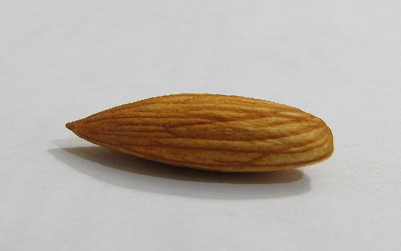 14 Almond / Badam and Almond Oil Beauty Benefits, Uses for Skin and Hair