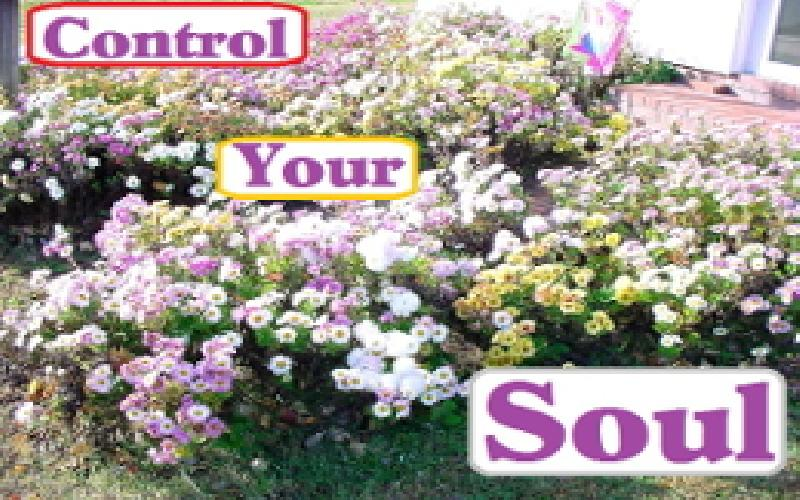 Control Your Soul