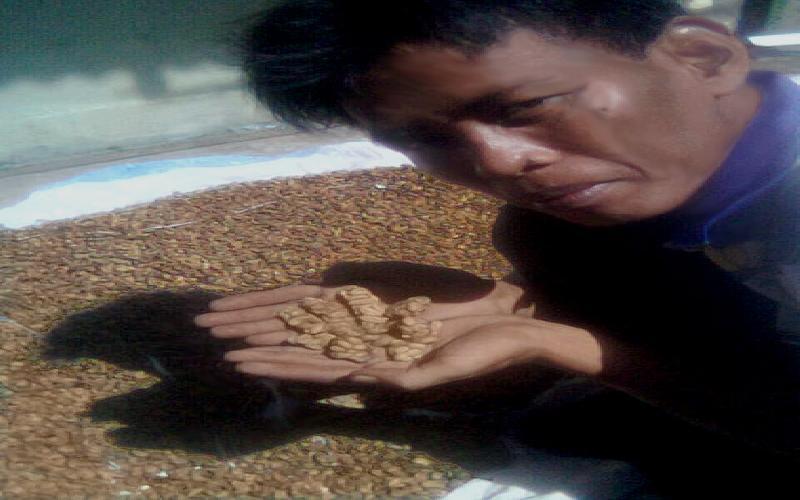 Why is Bali Coffee (  Luwak Coffee ) so Famous?