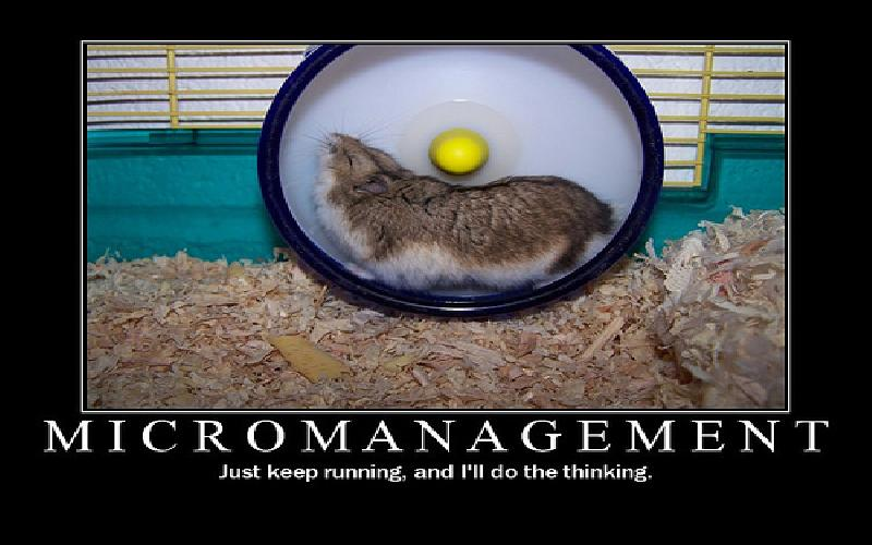 Micromanagement: Disadvantages of this Management Style