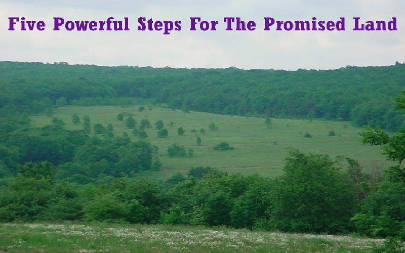 Five Powerful Steps For The Promised Land
