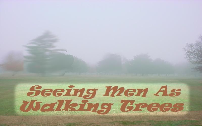 Seeing Men As Walking Trees