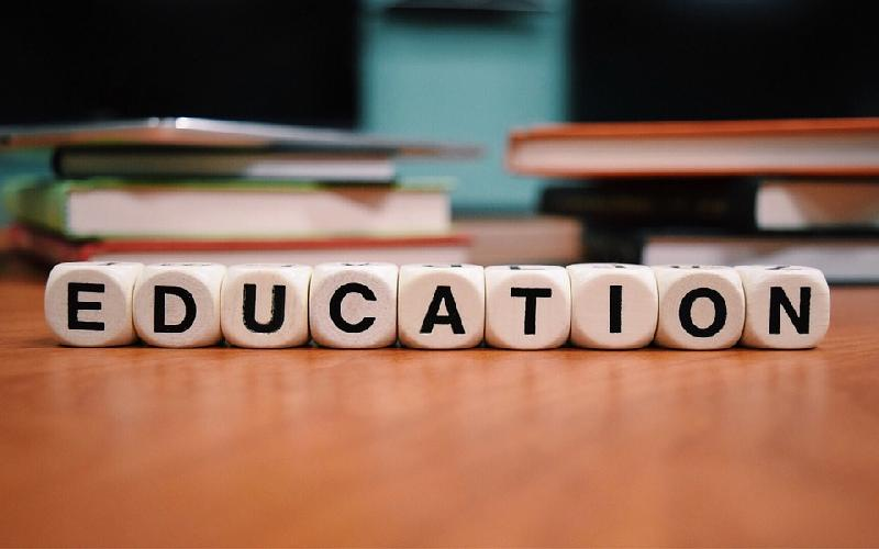 What are various types of Education?