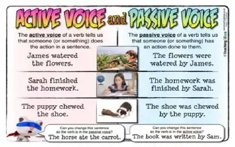 Active Versus Passive Voice Sentences in Business English Communication