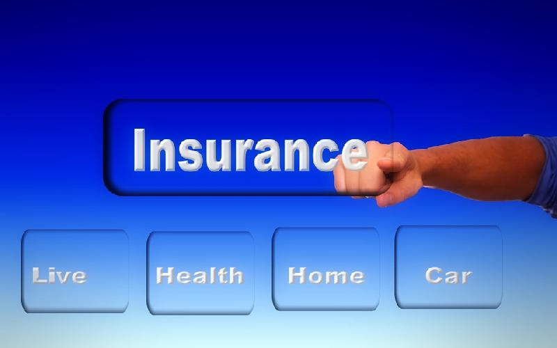 What Is A Variable-Unit Linked Insurance and How to Invest in It?