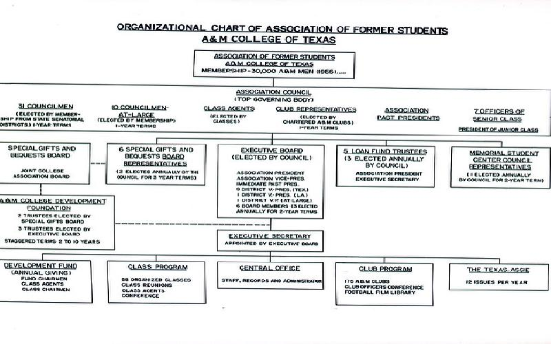 Organizational Chart - The Importance of organizational chart and its uses in a business