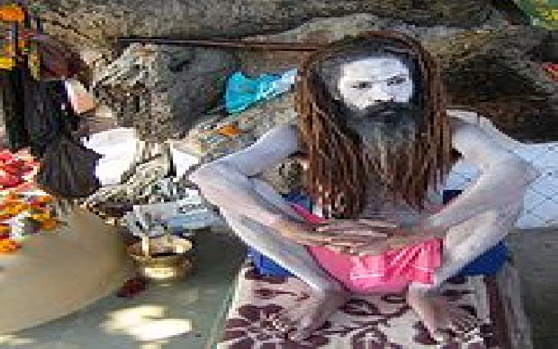 Bane of Hinduism are the Sadhus and Babas and they have lots of support