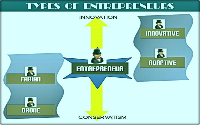 What are various types of entrepreneur?