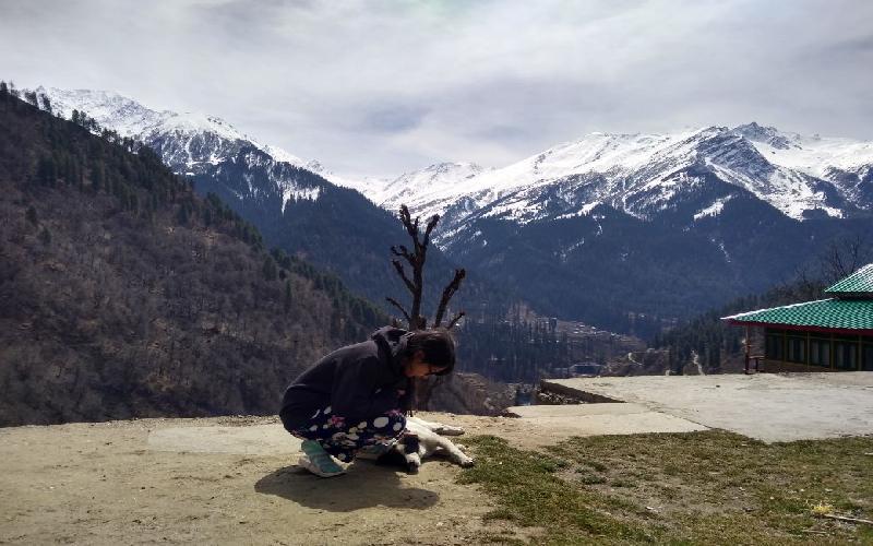 Tosh, Himachal Pradesh - An Unexplored Gem of India