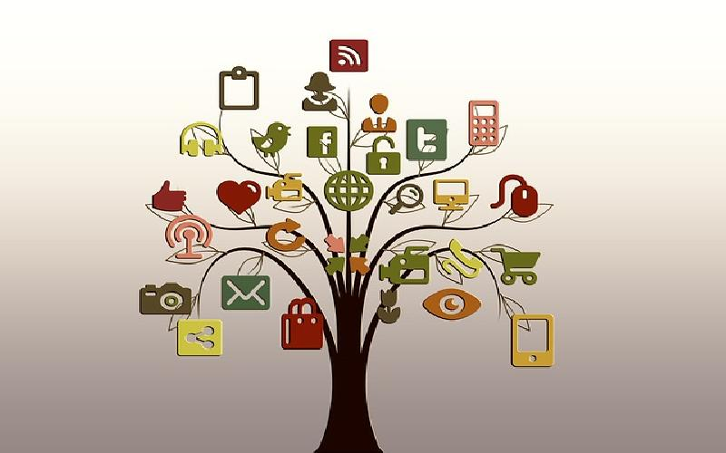 Top Social Networks That Supply Free Advertising
