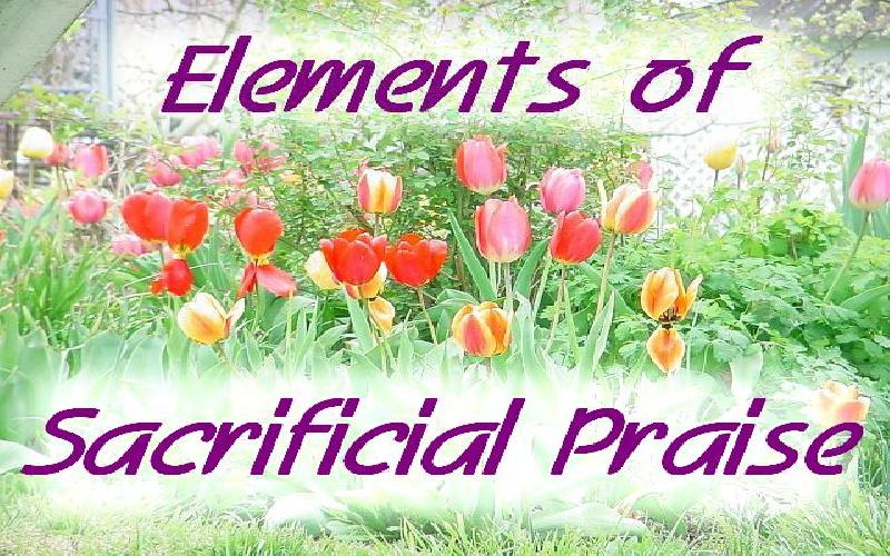 Elements Of Sacrificial Praise