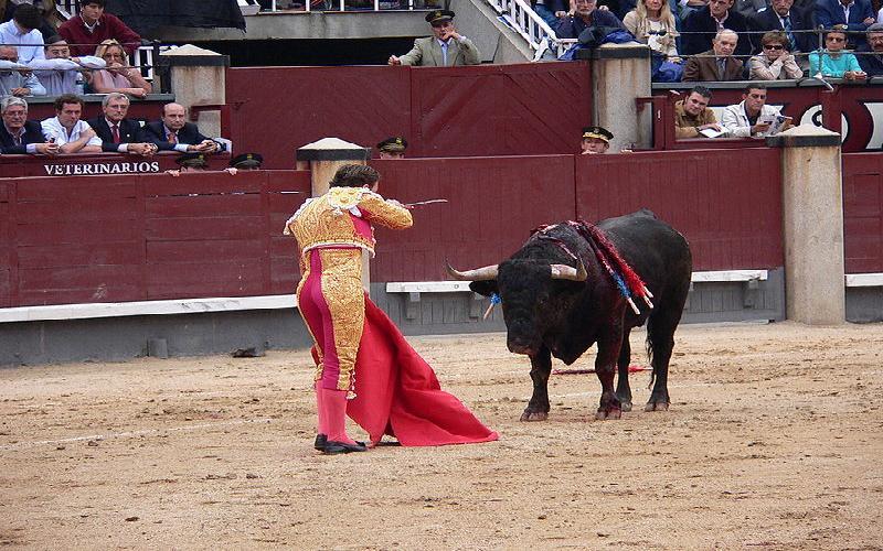 Bullfighting is back in Bogota( Columbia) and Catalina( Spain)