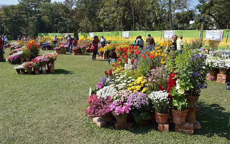 Flower Show by Agri Horticulture Society in Kolkata
