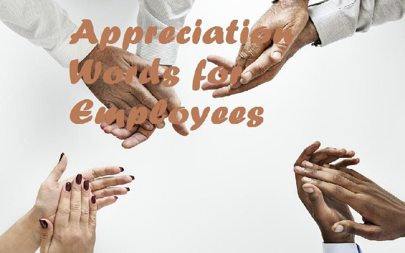 appreciation words for employees