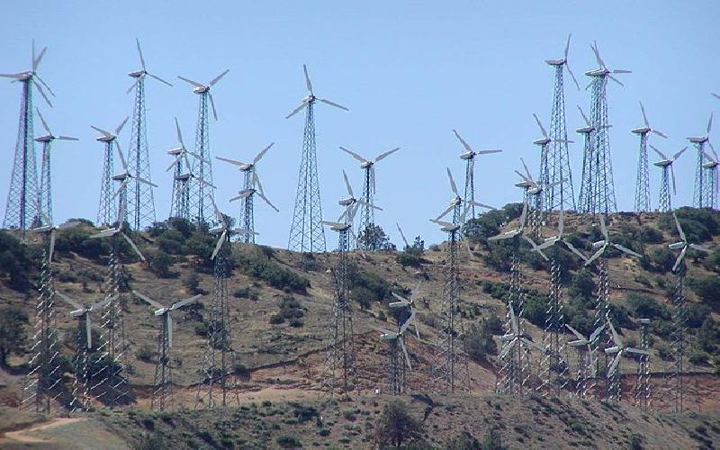 Should Government Subsidize Renewable Energy Sources such as Wind, Solar and Ethanol