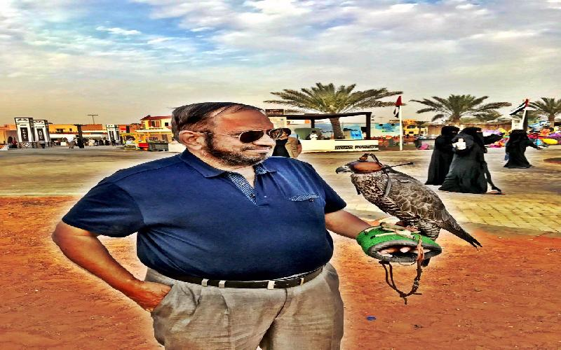 The Falcon is a Greatly Loved Bird in the UAE