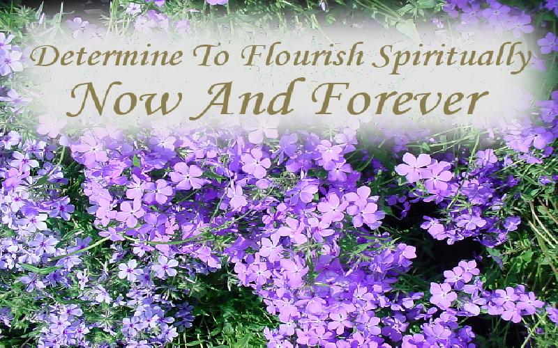 Determine To Flourish Spiritually Now And Forever