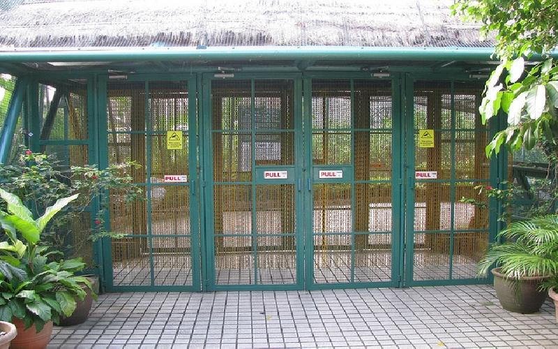 What Makes KL Bird Park So Special?