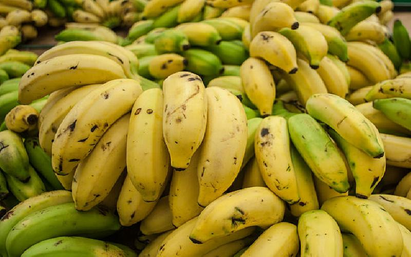 A Look at How Bananas Benefit Your Diet
