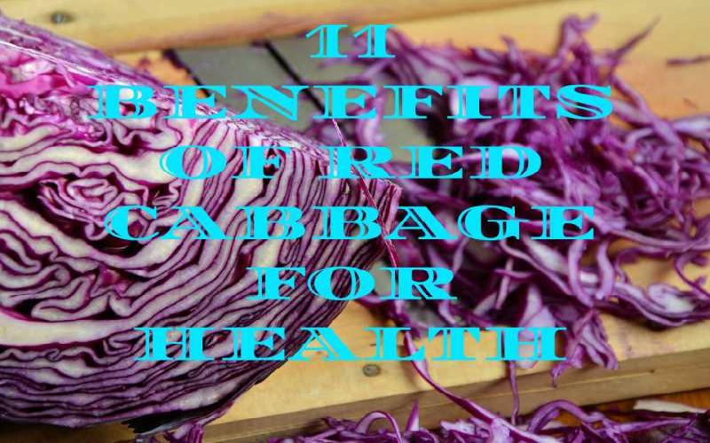 11 Benefits of Red Cabbage for Health