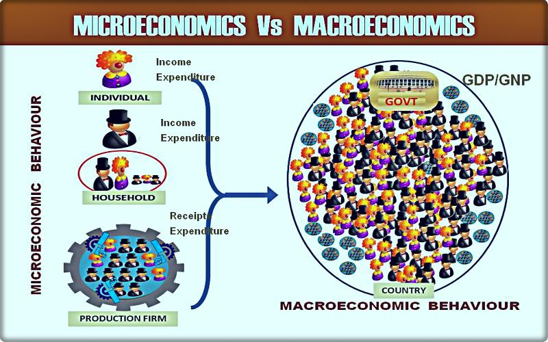Microeconomics Vs Macroeconomics:  Which is Important & Why?