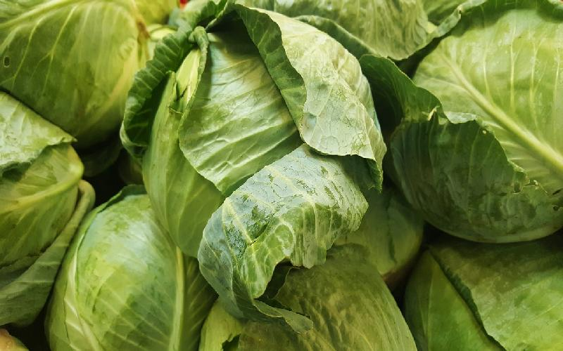 15 Health Benefits of Cabbage: Uses of Cabbage Juice, Nutritional Value of Cabbage and Medicinal Uses